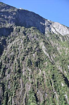 Steile Felshänge, welche beinahe für eime Nackenstarre sorgten.