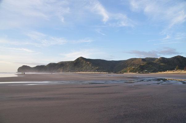 Der Strand von Piha