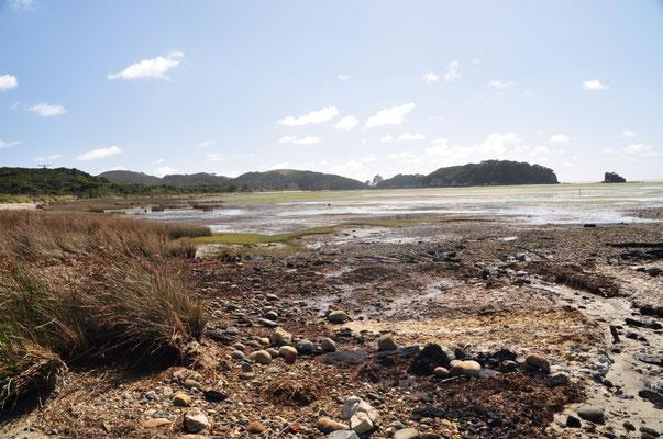 Entlang der Golden Bay