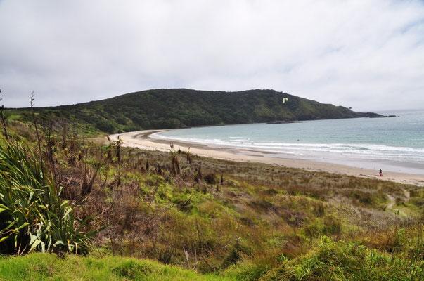 Matai Bay - wir hatten den Strand fast für uns alleine