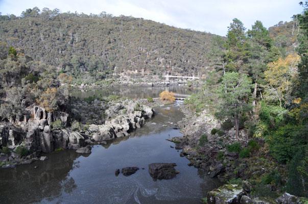 Auf unserer Wanderung um den Cataract Gorge