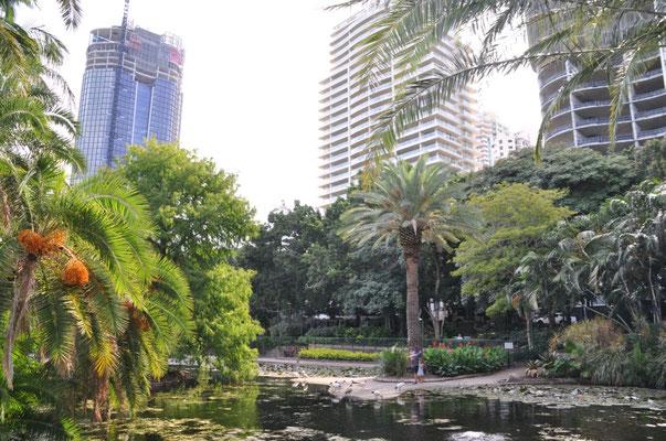Botanischer Garten - Eine grüne Oase mitten in der Stadt.