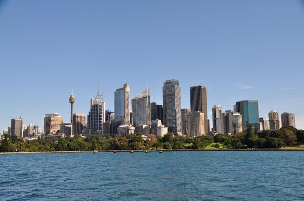 Skyline von Sydney - Blick vom Royal Botanic Garden