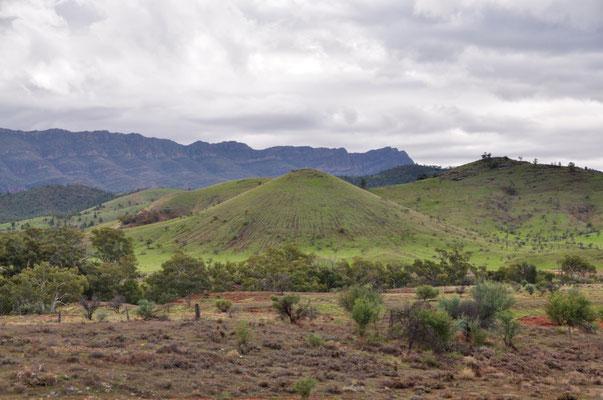 Flinders Ranges Nationalpark - Könnte aber auch irgendwo in Neuseeland sein?!