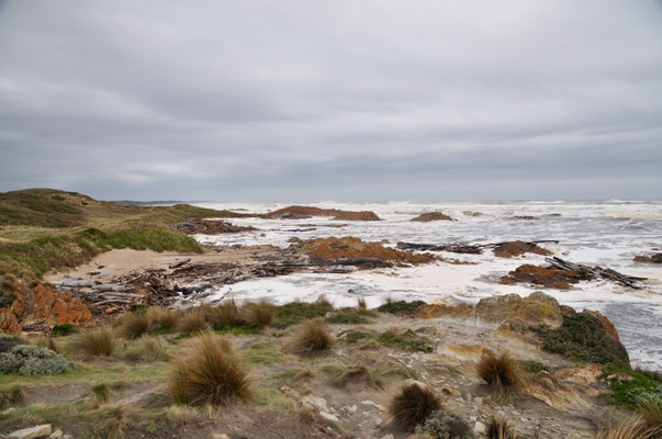 Tasmaniens wilde Westküste