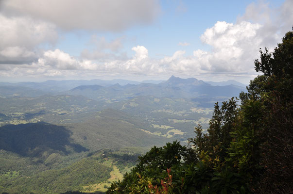 """""""Best of All Lookouts"""": Aussicht auf den Vulkan Mount Warning (rechts im Bild)"""