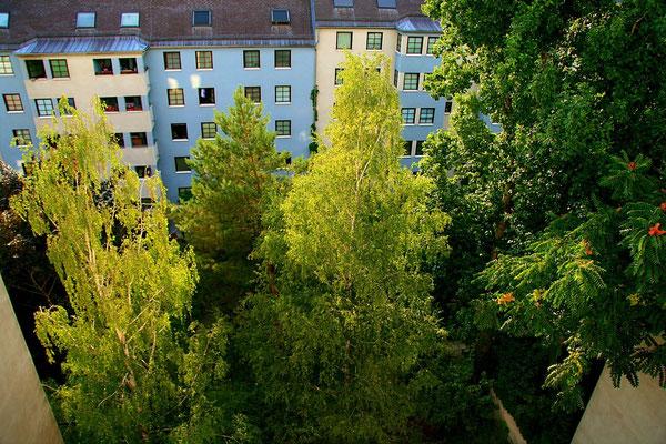grüner Hof