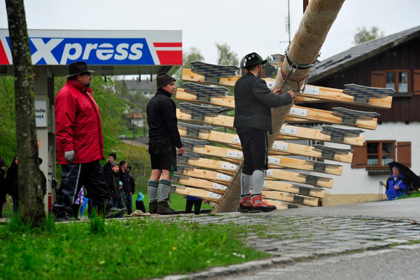 ... er kommt hoch...      -         Foto: Manfred Zinss