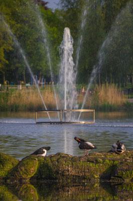 Speckenbütteler Park, Bremerhaven