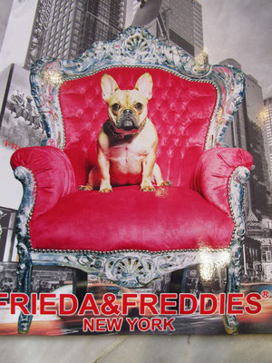 FRIEDA&FREDDIES
