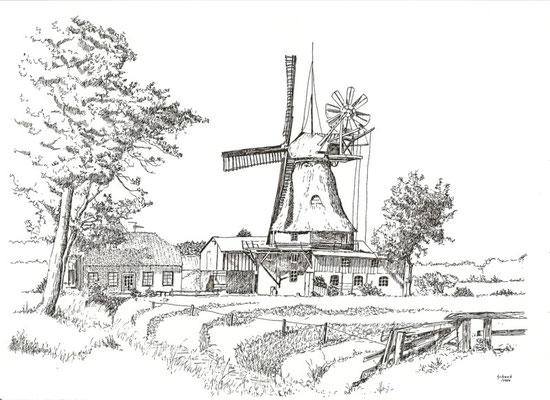 Mühle in Eddelak - Kreis Ditmarschen