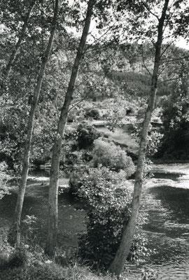 © Au bord du Tarn (1)
