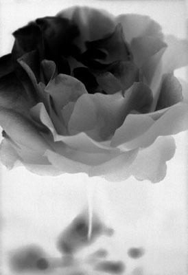 © En robe noire - vendu 4/20