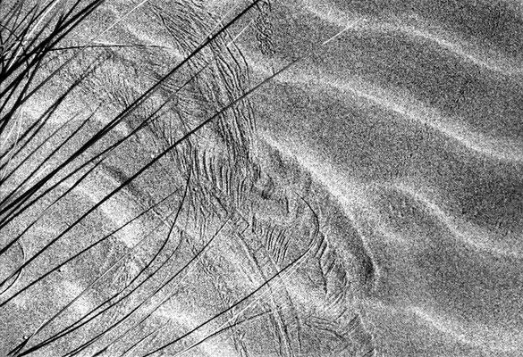 © Lignes épurées