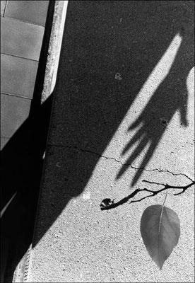 © Autoportrait 2