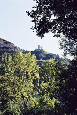 © Les Gorges du Tarn (4)