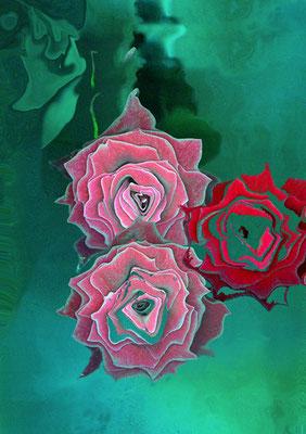 © Trois roses