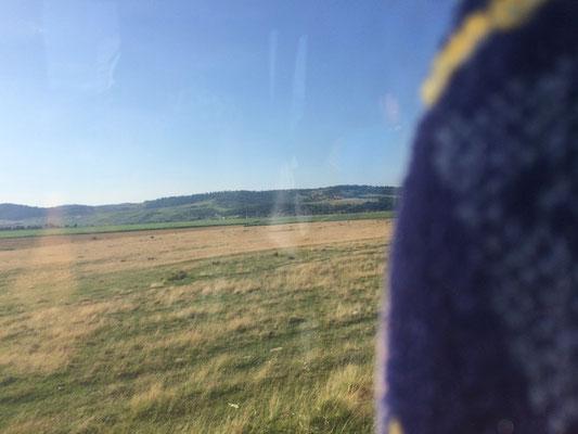 Im Bus nach Bran
