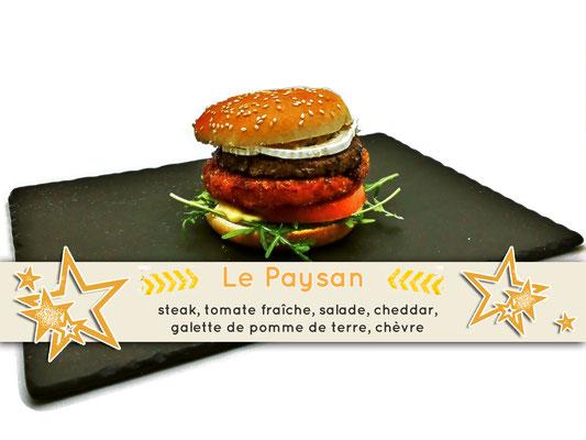Mister Burger Fréjus - Payasan