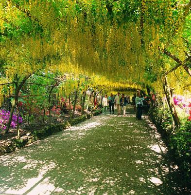 Bodnant Gardens © Visit Wales
