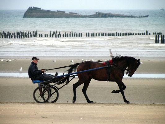 Sulkyfahrer am Strand der Normandie