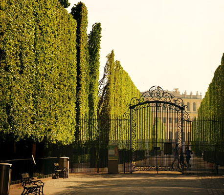 Schlosspark Schönbrunn, Wien