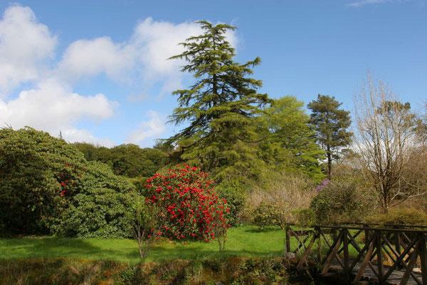 Crarae Gardens