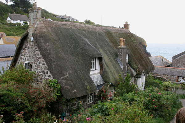 Reetdachhaus in Cornwall