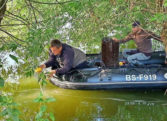 Der Vorsitzende des Angelsportverein Luthe Jan Schiffers (links) und Matthias Emmrich vom Anglerverband Niedersachsen holen die Reusen ein.