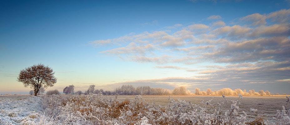 Der winterliche Himmel über der Hammelandschaft.