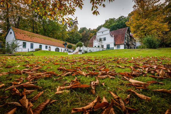 Herbstlaub am Barkenhoff