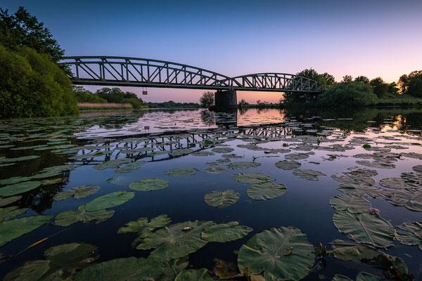 Die Moorexpress-Brücke über die Hamme mit Seerosen