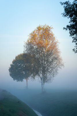 Nebel in Überhamm