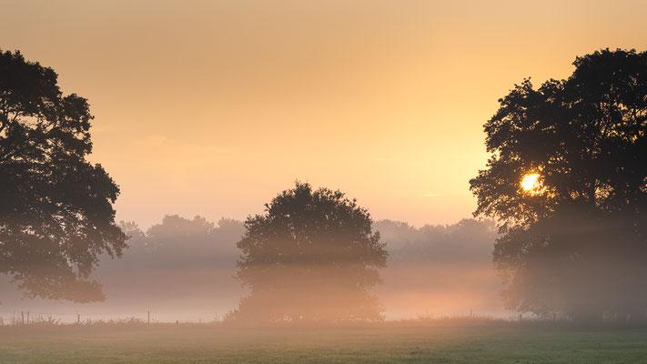 Goldene Stunde am frühen Morgen
