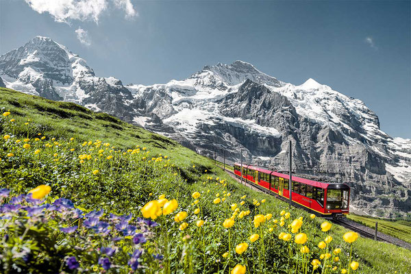 Jungfrau Train Sommer
