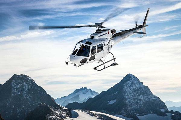 Fuchs Helikopter Ecureuile