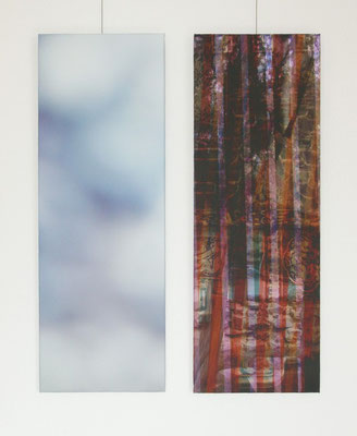 untitled, 2008 (2 parts) Inkjet-Print on Canvas. Size: 2x 100 x 35 cm