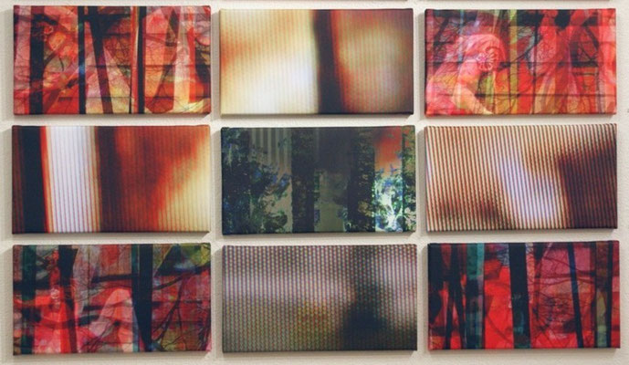 untitled 2009 (12 single parts). Inkjet-Print on Canvas. Size: 12x 20 x 37 cm (some are in private possession)