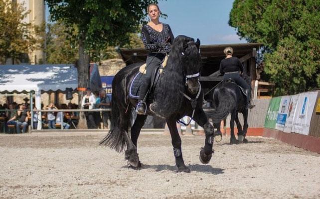 Pferdefest Oggau