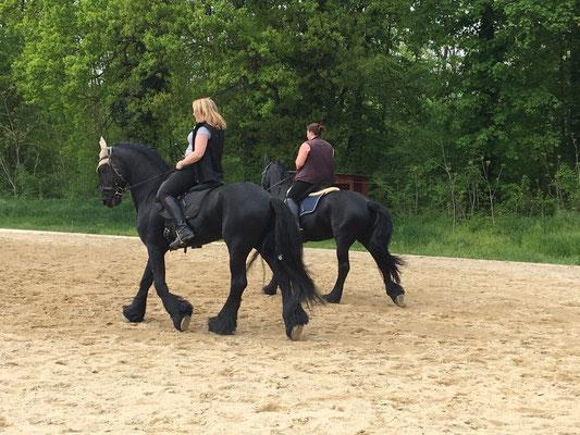 Training 23.4.2016 Obersiebenbrunn