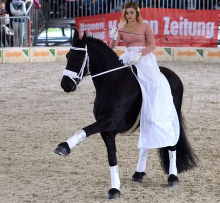 Pferdeland Kärnten