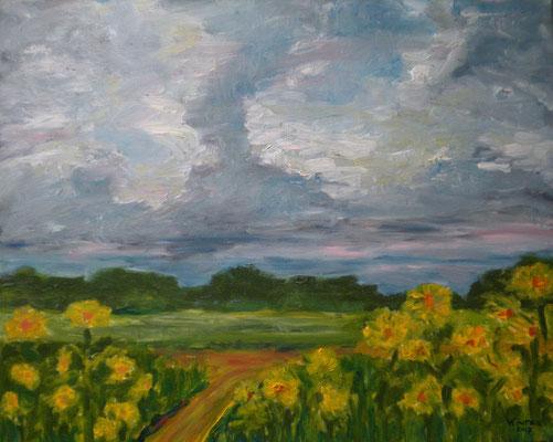 Sonnenblumen bei Reinfeld 2