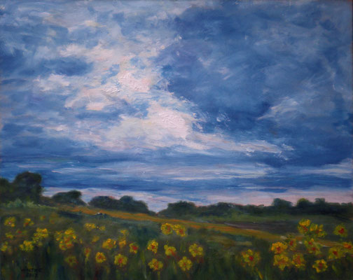 Sonnenblumen bei Reinfeld 1