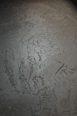Steinputz Textur3 Hürth Köln Maler Malermeister Thorsten Rosenberger Maler des Jahres Design