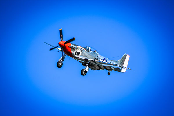 Mustang P51 - Dittinger Flugtage 2018