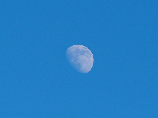 Der Mond bei Tag