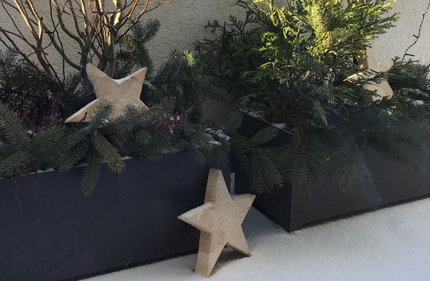 dekorative Sterne