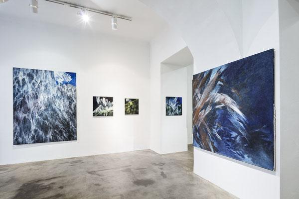 Ausstellungsansicht Galerie Transit 2018, Foto: Croce & WIR
