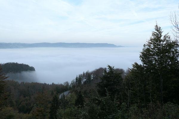 Ausblick vom Kesselberg Richtung Kochelsee