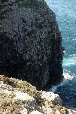 Portugal, Algarve, Sagres (südwestlichster Punkt des europäischen Festlands)